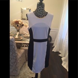 AA Studio Dress Size 14 P